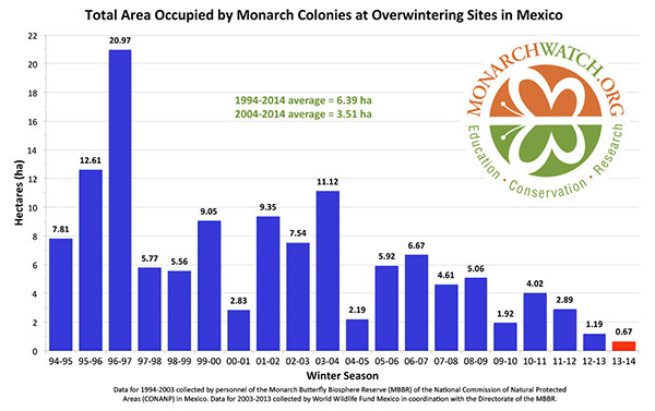 Monarch butterfly populations overwintering in Mexico as measured by hectares. Photo courtesy of Monarch Watch.