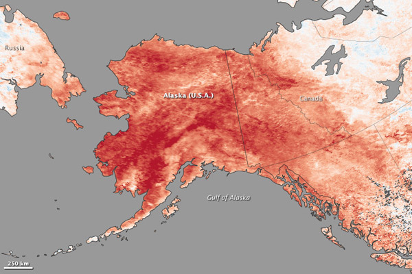 Temperatures in Alaska from January 23-30, 2014 as compared to same period average from 2001-2010. Image by: NASA.