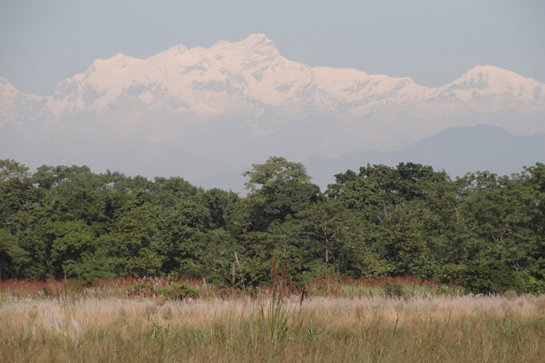 Himalayas behind Chitwan National Park. Photo by: Grzegorz Mikusinski.
