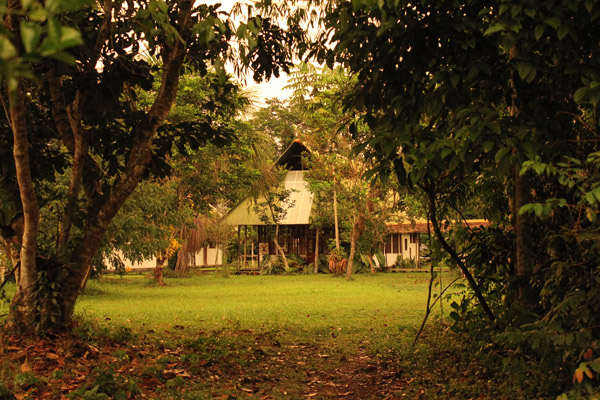 The Los Amigos Biological Field Station on the Madre de Dios River in Peru. Photo credit Mrinalini Erkenswick Watsa.