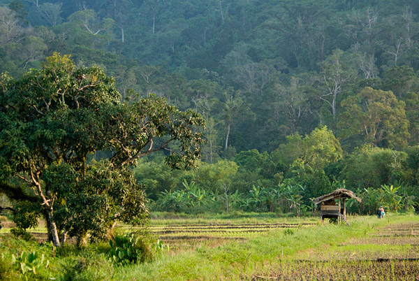 Farm bordering the National Park. Photo by Erick Danzer.