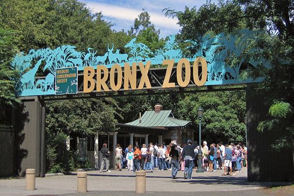 The Wildlife Conservation Society's (WCS) Bronx Zoo. Running four zoological institutions, WCS funds more conservation work than any other zoo in the world. Photo by: Postdlf
