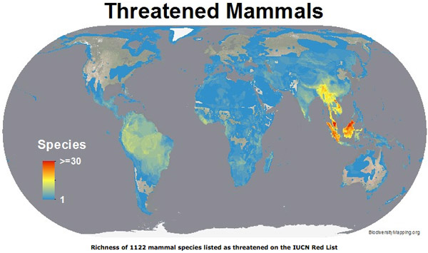 Map shows the regions with the most threatened mammals. Map courtesy of Biodiversitymapping.org.