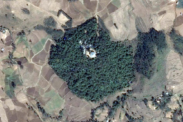 Google Earth view of a church forest in Ethiopia. Photo courtesy of Google Earth.