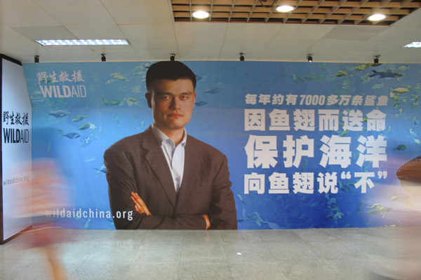 Ads with basketball legend Yao Ming have helped drive down the shark fin trade. Photo by: WildAid.