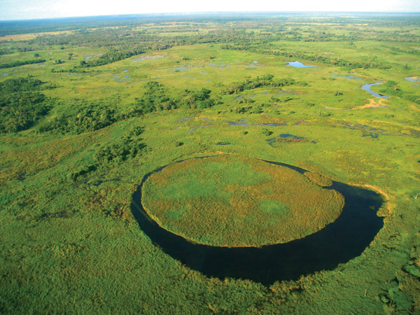 Expansive landscape mosaic of the northern Pantanal of Brazil. Photo by Steve Winter, Panthera.