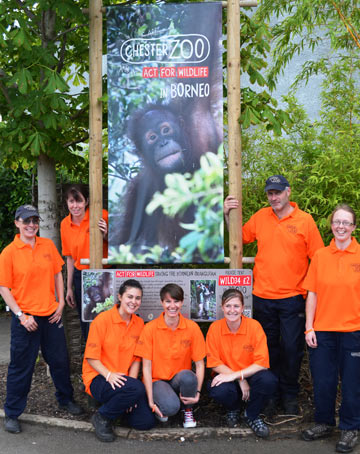 Chester Zoo staff celebrating Go Orange for Orangutans. Photo courtesy of Chester Zoo.