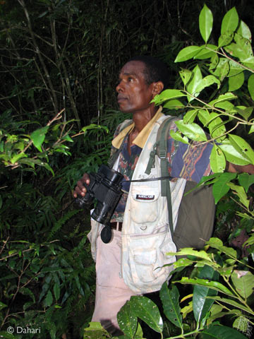 Dahari ecological technician, Ishaka, looking for owls at dusk. Photo by: Dahari.
