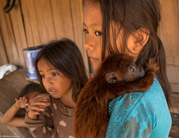 A red howler monkey orphan, taken from the forest, clings to a girl. Photo by: Mohsin Kazmi.