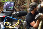 Edited Reality: What I Learned from Filming Eaten Alive