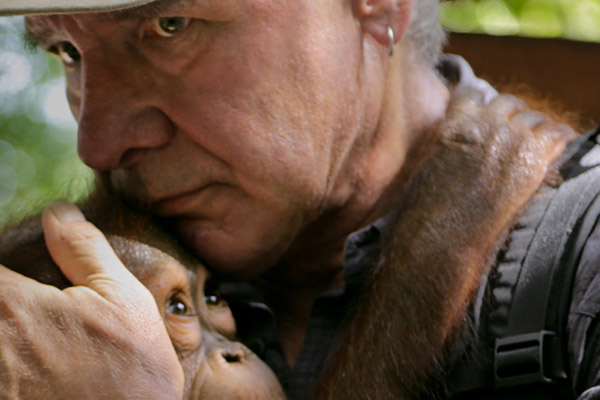 Harrison Ford with orangutan in Years of Living Dangerously. Photo from: Years of Living Dangerously/Showtime.