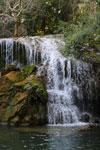 Waterfall at the Parque das Cachoeiras in Bonito [bonito_0291]
