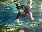 Snorkeling in the Rio da Prata [bonito_0770]