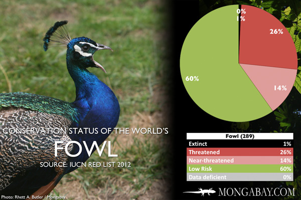 Chart: conservation status of the world's fowl (pheasants, guans, and allies)