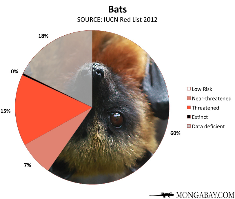 Chart: conservation status of the world's bats