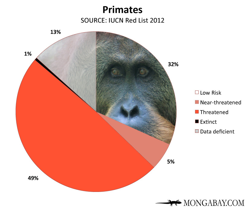 Chart: conservation status of the world's primates