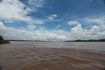 The muddy Amazon River