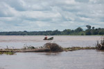 Man driving a boat in the Colombian Amazon