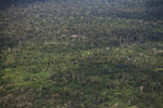 Aerial view of secondary and primary forest in the Amazon