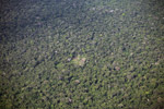 Aerial photo of shifting cultivation in the Amazon rainforest