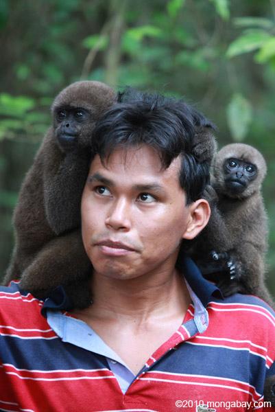 Common woolly monkeys at a rehabilitation center. Photo by: Rhett A. Butler.