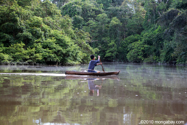Indigenous Tikuna paddling a dugout canoe on a tributary of the Amazon in Colombia. Photo by: Rhett A. Butler.