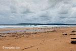 Surfing melanggar di sebuah pantai di Ujung Kulon