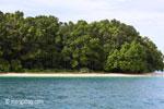 Peucang Island beach [java_0434]