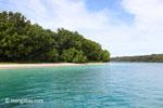Peucang Island beach [java_0443]