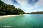 Peucang Island beach [java_0468]