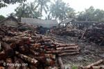 Teak logs outside an Indonesian sawmill