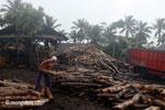 Sawmill in Java