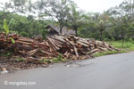Log dump outside an Indonesian sawmill