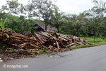 Log dump outside a sawmill