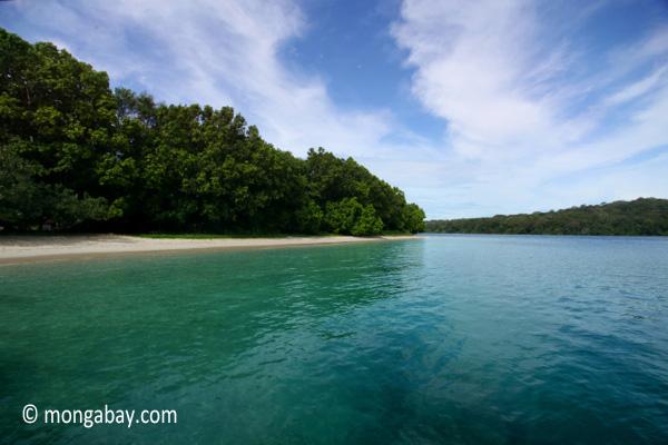 Peucang Island beach [java_0449]