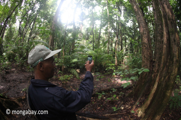 Ranger using a camera phone on patrol in Java. Photo by: Rhett A. Butler.
