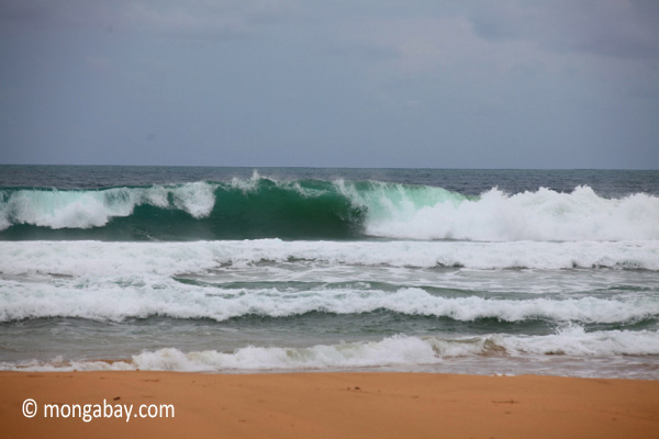 Indian Ocean waves breaking on the Western-most part of Java. Photo by: Rhett A. Butler.