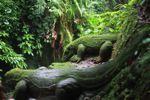 Komodo batu ukiran