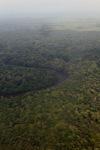 Aerial view dari sungai hutan hujan di Indonesia