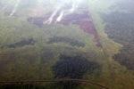 Aerial vew of burning peatlands in Indonesia's West Kalimantan province [kalbar_1203]