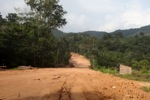 Pertambangan jalan melalui hutan hujan di Kalimantan, Indonesia