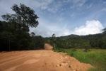 Mining road through rainforest in Indonesian Borneo [kalbar_2269]