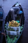 Floating market in Banjarmasin [kalsel_0204]