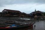 Kayu dari Kalimantan Tengah yang dijual di sebuah pasar di Banjarmasin