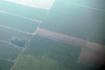 Plantations as seen from an airplane in South Kalimantan [kalsel_0250]
