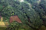 Perkebunan, hutan, dan kebun dekat Medan, Sumatera