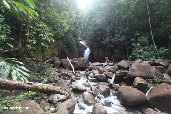Riam Berasap waterfall in Gunung Palung National Park [kalbar_0765]