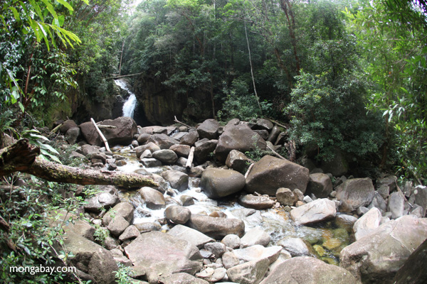 Riam Berasap waterfall in Gunung Palung National Park