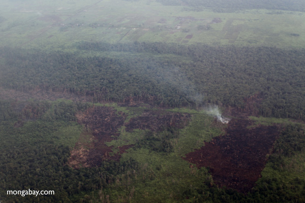 Burning forest and peatland in Indonesia. Photo by: Rhett A. Butler.