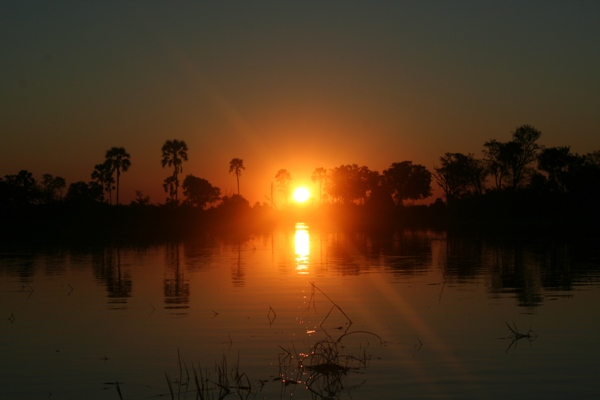Sun setting in the Okavango Delta. Photo by: Jeremy Hance.